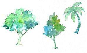 tree-747364__180
